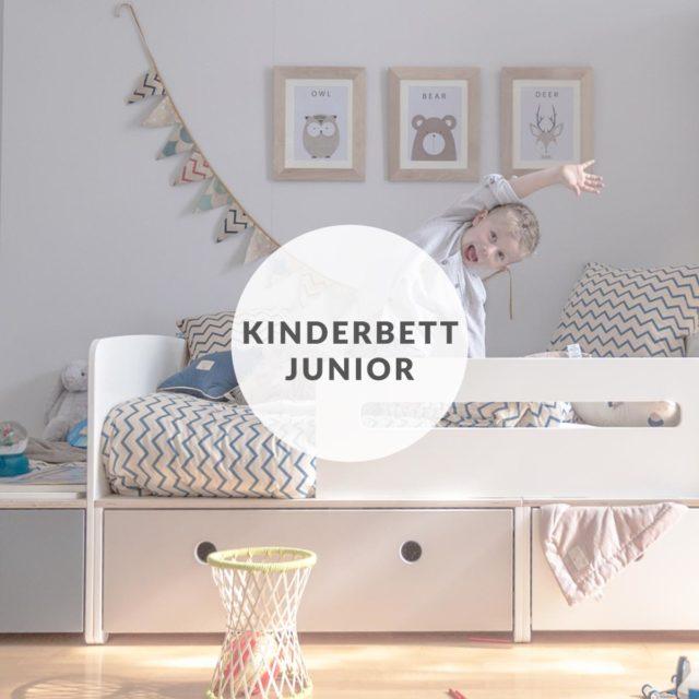 colorflex-by-ak-encart-home-Juniorbett