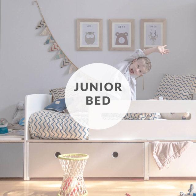 colorflex-by-ak-encart-home-junior-bed