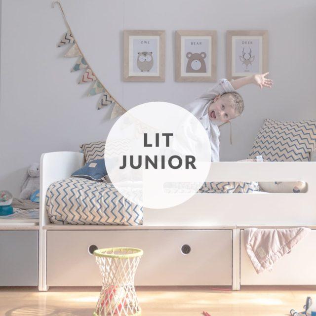 colorflex-by-ak-encart-home-lit-junior-évolutif